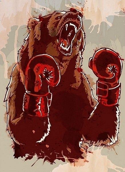 Фото медведей на аву