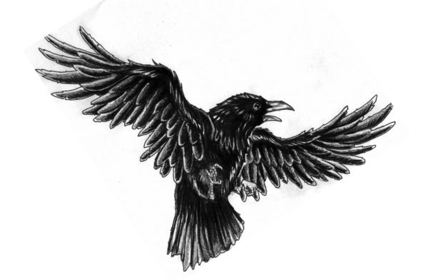 Flying crow tattoos