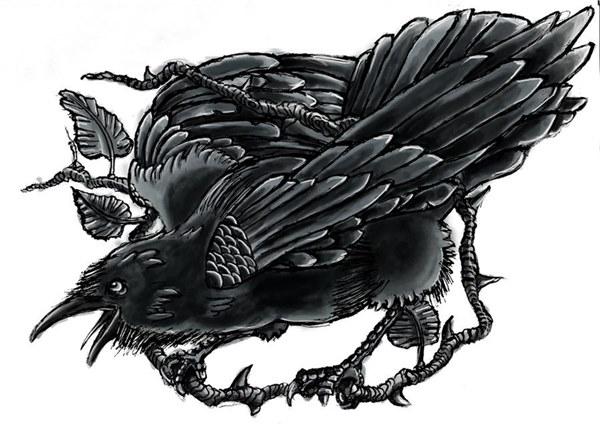 Raven tattoo art