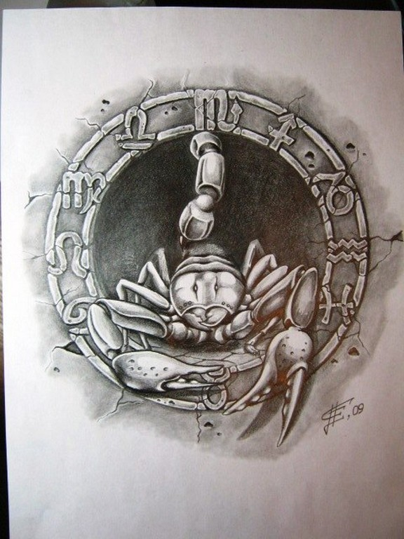 Татуировки знак зодиака скорпион эскизы