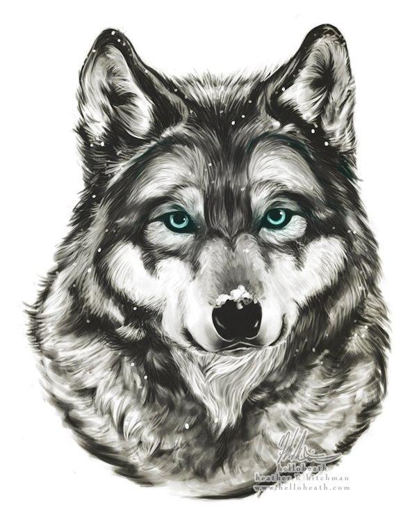 или нет, фото рисунок руками волк увеличивает белый урон