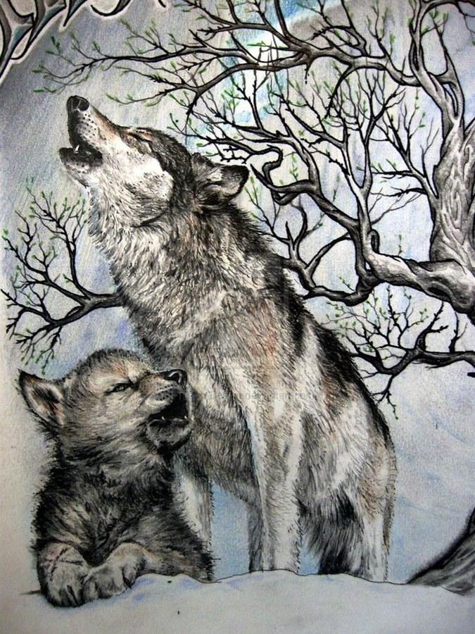 серванты, картинки тату волчица с волчатами процесс